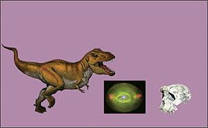 Vignette pour un objet LOM MER Histoire 5e- 6e Thème 2 - De l'Univers à l'homme